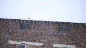 Χιονοθύελλα χιονιού σε μια στέγη απόθεμα βίντεο
