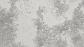χιονοπτώσεις ισχυρές απόθεμα βίντεο