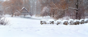 χιονοπτώσεις πάρκων Στοκ Εικόνες
