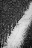 Χιονοπτώσεις στην αλέα πόλεων Στοκ Φωτογραφίες