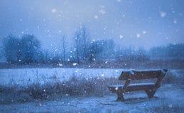 Χιονοπτώσεις στη φύση τη νύχτα Στοκ φωτογραφία με δικαίωμα ελεύθερης χρήσης