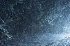 Χιονοπτώσεις στο δάσος τη νύχτα Ο δρόμος που καλύπτεται με το χιόνι νέο έτος παραμονής του 2009 Στοκ Εικόνες