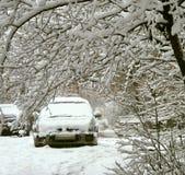 χιονοπτώσεις Στοκ Φωτογραφία