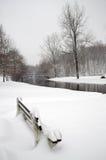 χιονοπτώσεις Στοκ Εικόνες