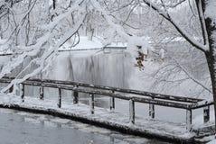 χιονοπτώσεις Στοκ Εικόνα