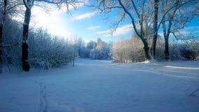 χιονοπτώσεις Στοκ εικόνα με δικαίωμα ελεύθερης χρήσης