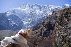 Χιονοσκεπή αιχμή και δάσος στα βουνά του Ιμαλαίαυ, περιοχή Annapurna, του Νεπάλ Στοκ Εικόνες