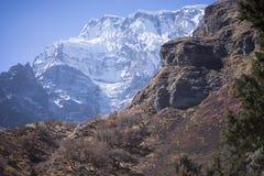Χιονοσκεπή αιχμή και δάσος στα βουνά του Ιμαλαίαυ, περιοχή Annapurna, του Νεπάλ Στοκ Φωτογραφίες