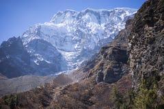 Χιονοσκεπή αιχμή και δάσος στα βουνά του Ιμαλαίαυ, περιοχή Annapurna, του Νεπάλ Στοκ φωτογραφία με δικαίωμα ελεύθερης χρήσης