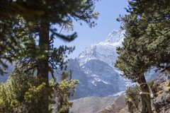 Χιονοσκεπή αιχμή και δάσος στα βουνά του Ιμαλαίαυ, περιοχή Annapurna, του Νεπάλ Στοκ εικόνα με δικαίωμα ελεύθερης χρήσης