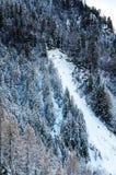 Χιονοστιβάδα (snowslide) Στοκ εικόνες με δικαίωμα ελεύθερης χρήσης