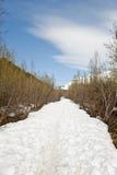 χιονώδες ίχνος Στοκ Εικόνα