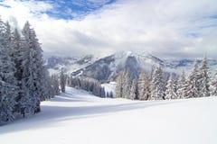Χιονώδες δάσος στις αυστριακές Άλπεις στοκ φωτογραφία