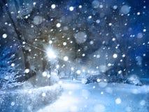 Χιονώδες πάρκο χειμερινής νύχτας Στοκ Εικόνα