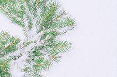 Χιονώδες παγωμένο στεφάνι Χριστουγέννων Στεφάνι των κλάδων έλατου Στοκ εικόνα με δικαίωμα ελεύθερης χρήσης