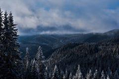 Χιονώδες σύνολο βουνών των δέντρων Στοκ φωτογραφία με δικαίωμα ελεύθερης χρήσης