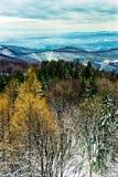Χιονώδες τοπίο βουνών στην Ουγγαρία Στοκ Εικόνα