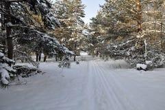 Χιονώδες τοπίο της Ουκρανίας στοκ φωτογραφία με δικαίωμα ελεύθερης χρήσης