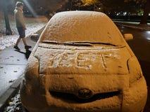 Χιονώδες meme στοκ φωτογραφία