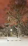 Χιονώδης έδρα σε ένα πάρκο τη νύχτα Στοκ Φωτογραφία