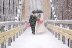 χιονώδης γάμος Στοκ Φωτογραφίες