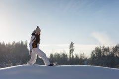 Χιονώδης δασώδης περιοχή στοκ εικόνα με δικαίωμα ελεύθερης χρήσης