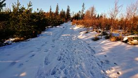 Χιονώδης δρόμος βουνών στοκ εικόνες