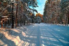 Χιονώδης δρόμος τοπίων Στοκ Φωτογραφίες