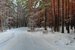 Χιονώδης δρόμος το χειμώνα Στοκ εικόνα με δικαίωμα ελεύθερης χρήσης