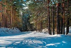Χιονώδης δρόμος το χειμώνα Στοκ Εικόνες