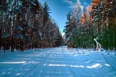 Χιονώδης δρόμος το χειμώνα Στοκ φωτογραφίες με δικαίωμα ελεύθερης χρήσης