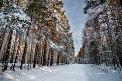 Χιονώδης δρόμος το χειμώνα Στοκ Φωτογραφίες