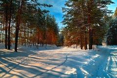 Χιονώδης δρόμος το χειμώνα Στοκ φωτογραφία με δικαίωμα ελεύθερης χρήσης