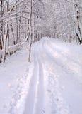 Χιονώδης δρόμος Στοκ εικόνες με δικαίωμα ελεύθερης χρήσης