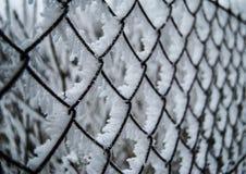 Χιονώδης και παγωμένος φράκτης Στοκ Εικόνες