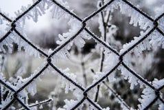 Χιονώδης και παγωμένος φράκτης Στοκ Φωτογραφίες