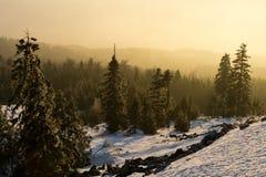 Χιονώδης κλίση με τα δέντρα, άποψη ηλιοβασιλέματος Στοκ Εικόνα
