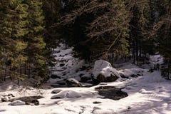 Χιονώδης κοιλάδα ποταμών στα βουνά της Ρουμανίας Στοκ Εικόνα