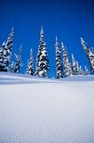 Χιονώδης λόφος στοκ φωτογραφία με δικαίωμα ελεύθερης χρήσης