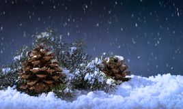 Χιονώδης νύχτα που θέτει με τους κώνους πεύκων στοκ φωτογραφία με δικαίωμα ελεύθερης χρήσης