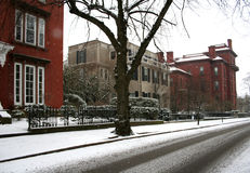 χιονώδης οδός Στοκ Φωτογραφία