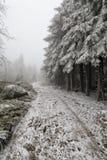 Χιονώδης πετρώδης δρόμος από την άκρη του δάσους Στοκ φωτογραφίες με δικαίωμα ελεύθερης χρήσης