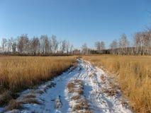 Χιονώδης πορεία από τον τομέα σίτου στη Σιβηρία, Ρωσία Ο χιονώδης δρόμος στη σιβηρική φύση τον Ιανουάριο στοκ φωτογραφία με δικαίωμα ελεύθερης χρήσης