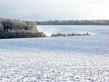 Χιονώδης τομέας Στο τέλος του τομέα μπορείτε να δείτε το δάσος στοκ εικόνες
