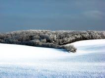 Χιονώδης τομέας Στο τέλος του τομέα μπορείτε να δείτε το δάσος στοκ φωτογραφίες με δικαίωμα ελεύθερης χρήσης