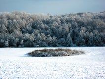 Χιονώδης τομέας Στο τέλος του τομέα μπορείτε να δείτε το δάσος στοκ φωτογραφία με δικαίωμα ελεύθερης χρήσης