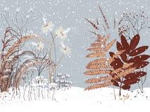 χιονώδης χειμώνας κήπων σχεδίου ομορφιάς ανασκόπησής σας ελεύθερη απεικόνιση δικαιώματος