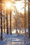 χιονώδης χειμώνας σκηνής π&r Στοκ Φωτογραφίες