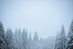χιονώδης χειμώνας σκηνής Στοκ εικόνες με δικαίωμα ελεύθερης χρήσης