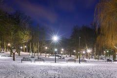 Χιονώδης χειμώνας στο πάρκο στο σούρουπο Στοκ εικόνα με δικαίωμα ελεύθερης χρήσης